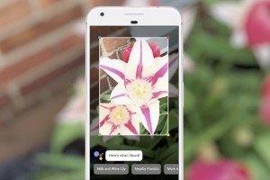 Google Lens - Koel ICT